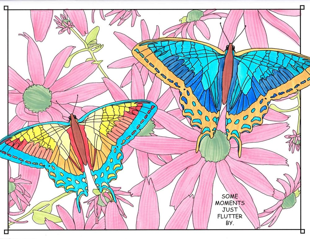 manitoulin coloring book butterflies flowers island ontario canada