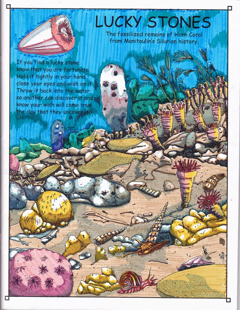 manitoulin island ontario canada great lakes huron coral fossils history adult coloring books